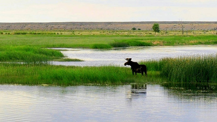 Trump administration announces plan for expanded hunting, fishing access across 1.4 million protected acres