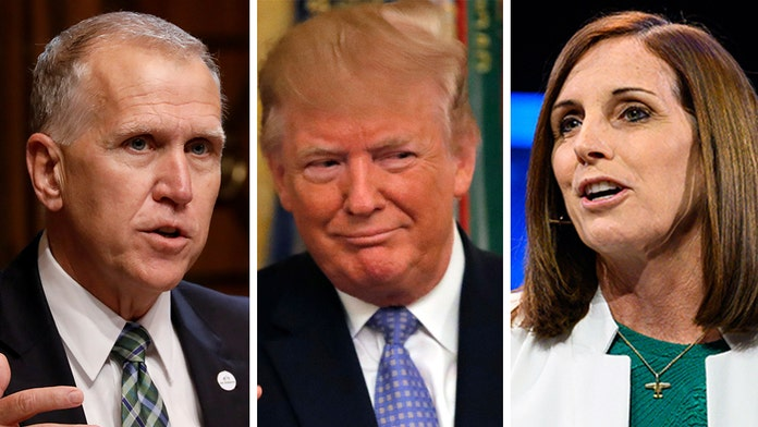 Trump endorses McSally in Arizona Senate race, Tillis in North Carolina
