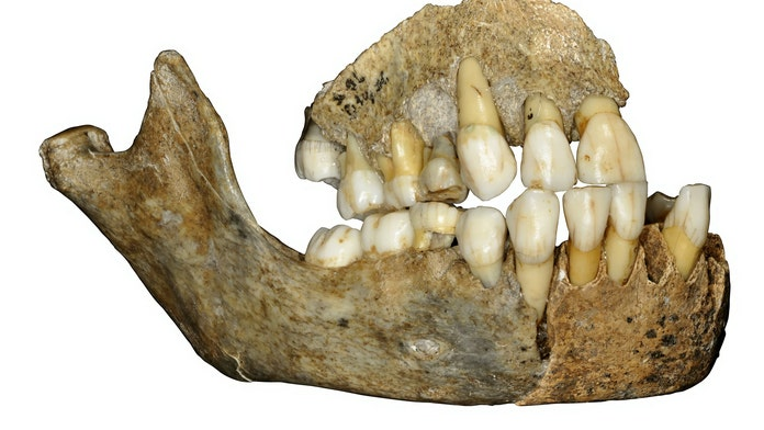 Some of oldest Neanderthal bones have been DNA tested showing more than 70 differences