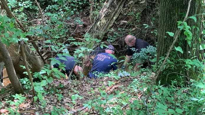 Woman's remains found in South Carolina creek, week after dog digs up human bones: police