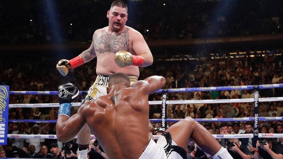 Image result for andy ruiz jr