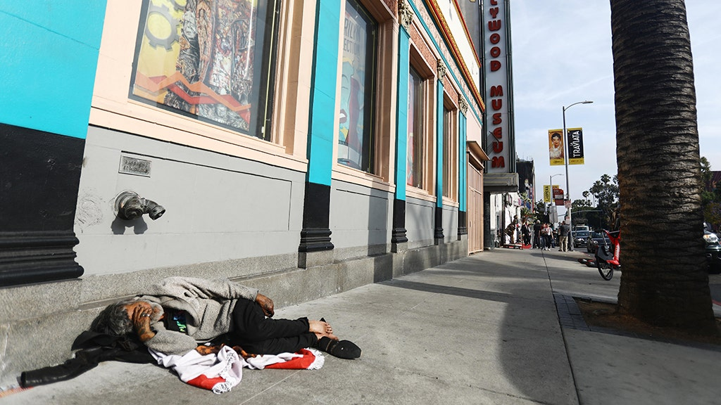 CURTIS HILL: California homeless crisis has exploded because THIS is missing