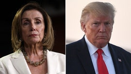 Democratic unity against Trump will be short lived, says WSJ columnist: Pelosi still has 'problem on her hands'