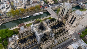 Environment group in France sues over 'health risk' from Notre Dame fire