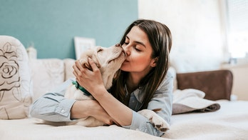 7 in 10 pet owners say they wouldn't have 'survived' 2020 without their animal companion