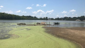 Mississippi farmers suffering after widespread flooding prevents crops from being planted