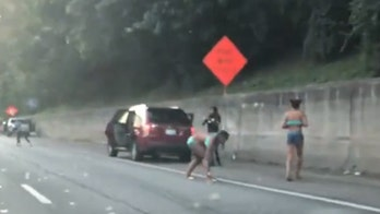 Video shows drivers in Georgia stopping to grab $175,000 in 'flying' cash on highway