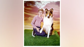 'Lassie' star Jon Provost says Timmy was never trapped in a well: 'We just don't know where that came from'