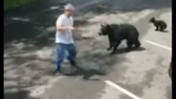 Video shows bear charging man who came within feet of cubs in Tennessee