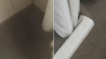 Cruise passenger claims cabin flooded with sewage-smelling 'waste water' during 'nightmare' voyage