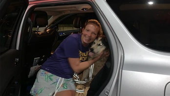 Technology reunites dog missing for 8 years with Tennessee owner