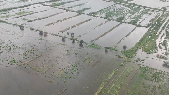 Tropical Storm Barry tests Louisiana's multi-billion-dollar post-Katrina flood defenses