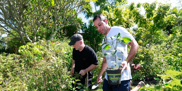 Ari Bargil, right, an attorney with the Institute for Justice, helps homeowner Tom Carroll, left, plant a pepper plant in Carroll's front yard. (AP Photo/Wilfredo Lee)