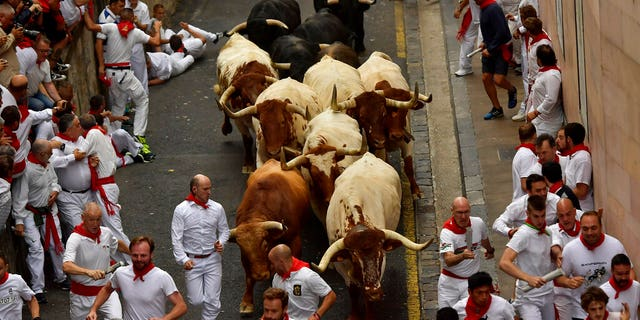Five people were hospitalized after a opening run of a bulls during a San Fermin Festival in Spain on Sunday, officials said.
