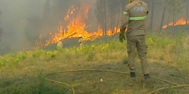Members of the emergency services try to extinguish the fire, in Vila de Rei, Portugal on Saturday. Portuguese authorities say 1,000 firefighters are working to contain wildfires that have injured eight firefighters and one civilian. Portugal's Civil Protection Agency says Sunday that firefighters are combating flames that broke out Saturday. (TVI via AP)