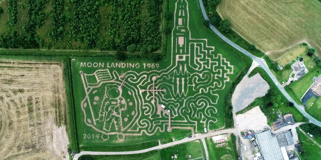 An aerial view of the maze at the National Forest Adventure Farm.