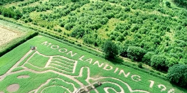 The maze commemorates the 50th anniversary of the Apollo 11 Moon landing. (SWNS)