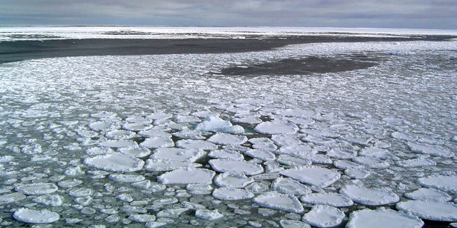 File photo: This January 2017 photo provided by Ted Scambos shows sea ice on the ocean surrounding Antarctica during an expedition to the Ross Sea. Ice in the ocean off the southern continent steadily increased from 1979 and hit a record high in 2014. But three years later, the annual average extent of Antarctic sea ice hit its lowest mark, wiping out three-and-a-half decades of gains, and then some, according to July 2019 study. (Ted Scambos/National Snow and Ice Data Center via AP)