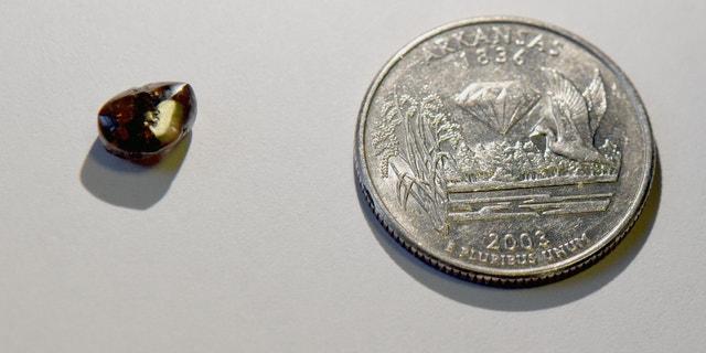 The 2.12-carat brown diamond discovered by Josh Lanik. (Arkansas State Parks)