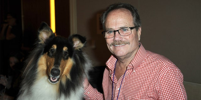 Lassie and actor Jon Provost participate in The Hollywood Show held at Westin LAX Hotel on July 13, 2013, in Los Angeles. (Photo by Albert L. Ortega/Getty Images)