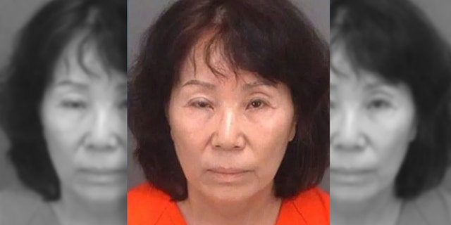 Indian Shores police arrested Jung Soon Wypcha, 66, after she was caught on Lu Lu's Ice Cream and Candy Shop's surveillance.