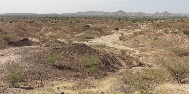 This is the Kanapoi site in Kenya, east Africa. (Credit: Carol Ward)