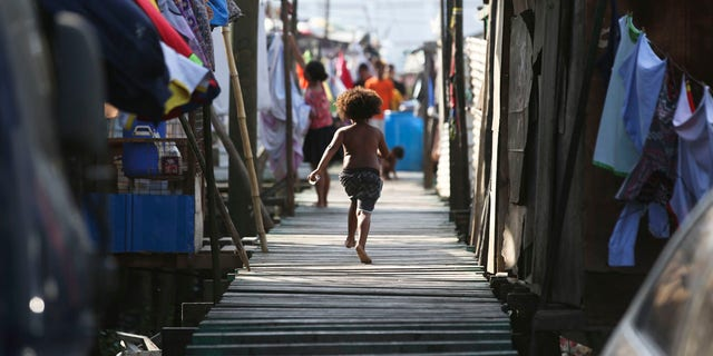 More than 20 people including profound women and children have been killed in new genealogical assault in Papua New Guinea, media reported on Wednesday.