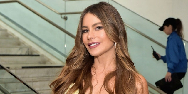 Sofia Vergara shared the stunning throwback on Thursday.
