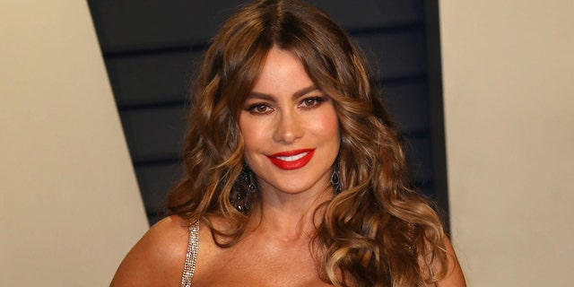 Sofia Vergara heats up Instagram with throwback bikini photo from the '90s.jpg