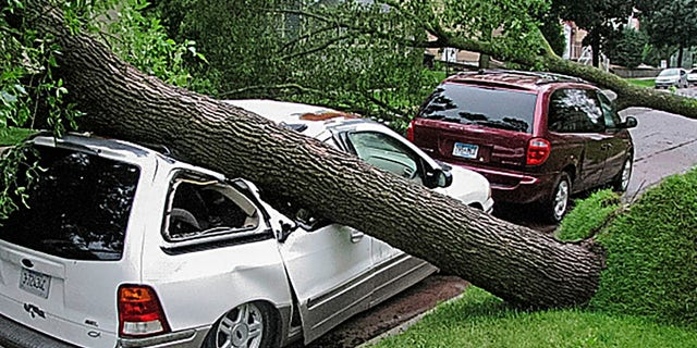 A tree uprooted by a morning storm crushes a vehicle parked in front of a residential building in Mankato, Minn., Saturday, July 20, 2019.
