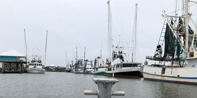 Several commercial fishing vessels docked in Grand Isle, La. Heavy rain and wind from Hurricane Barry forced commercial fishermen out of the game for days. (Fox News/ Charles Watson)