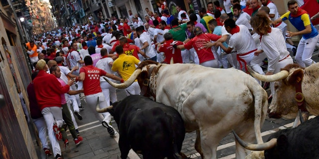 Revelers run next to fighting bulls during the running of the bulls at the San Fermin Festival, in Pamplona, northern Spain, Thursday, July, 11, 2019. (AP Photo/Alvaro Barrientos)