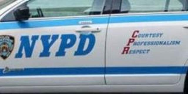 Twin infants were found dead in the back of a Bronx car on Friday, police said.