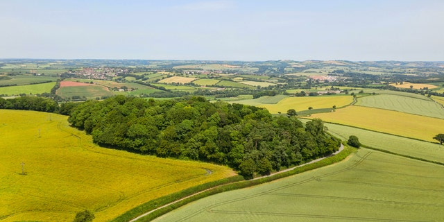 An extinct 250-million-year-old British volcano has been put up for sale - for just £50,000. The former lava-spilling site is now known as Posbury Clump and the new owners would enjoy stunning views from the historic hilltop site. (Credit: SWNS)