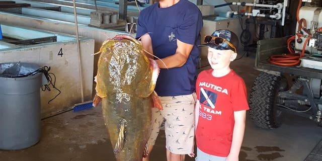 Griffin's uncle (not pictured) indeed hold a state's prior flathead record – from 2011 by 2016 – after disorder in an considerable locate on a same river.