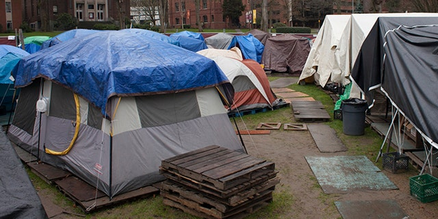 A homeless encampment is pictured in Seattle, Washington.Smaller towns and cities in Maine don't have shelters like Portland and Bangor do. In Belfast, even if a tent is issued, there isn't a municipal campground. So people must get permission to pitch a tent on private property, or use a private campground.