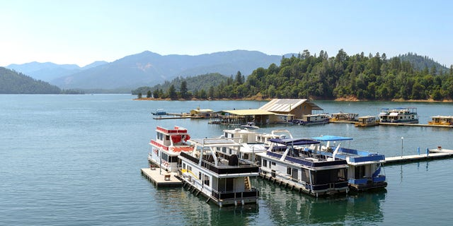 Deputies reportedly responded to a call about a really inebriated boater on Shasta Lake in California on Thursday.