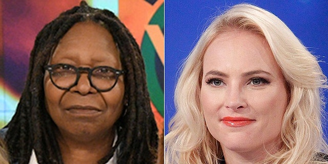Meghan McCain returned to co-host 'The View'聽on Wednesday via video chat.聽