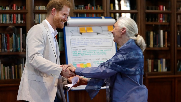 Prince Harry dances with Dr. Jane Goodall at Windsor Castle