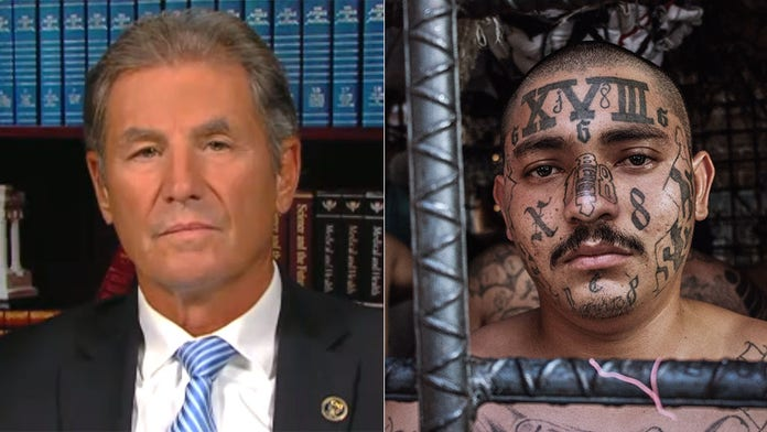 Ex-FBI official: 'Insidious' MS-13 gang isn't after money, just wants to spread 'senseless violence'