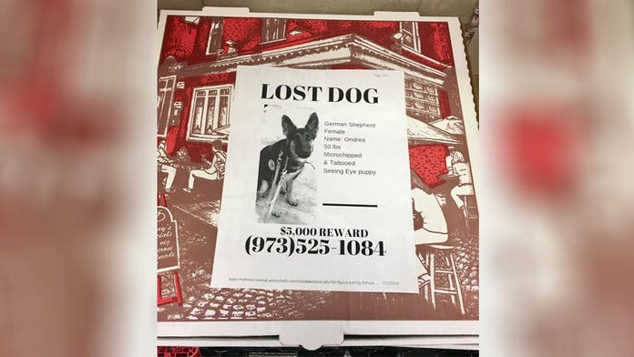 New Jersey pizza place is helping community find their lost pets