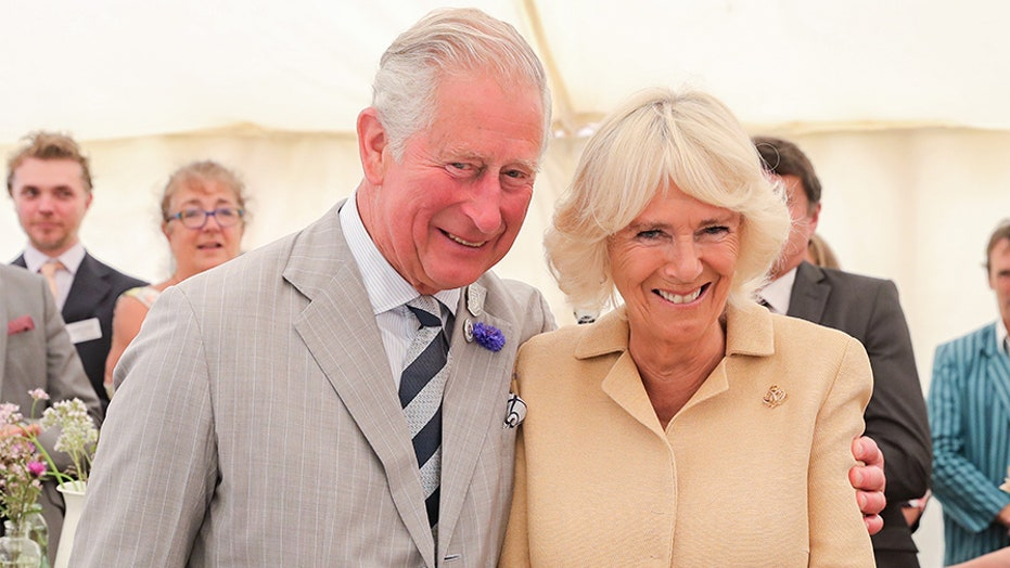 Camilla has transformed from 'the most hated woman in Britain' to ...