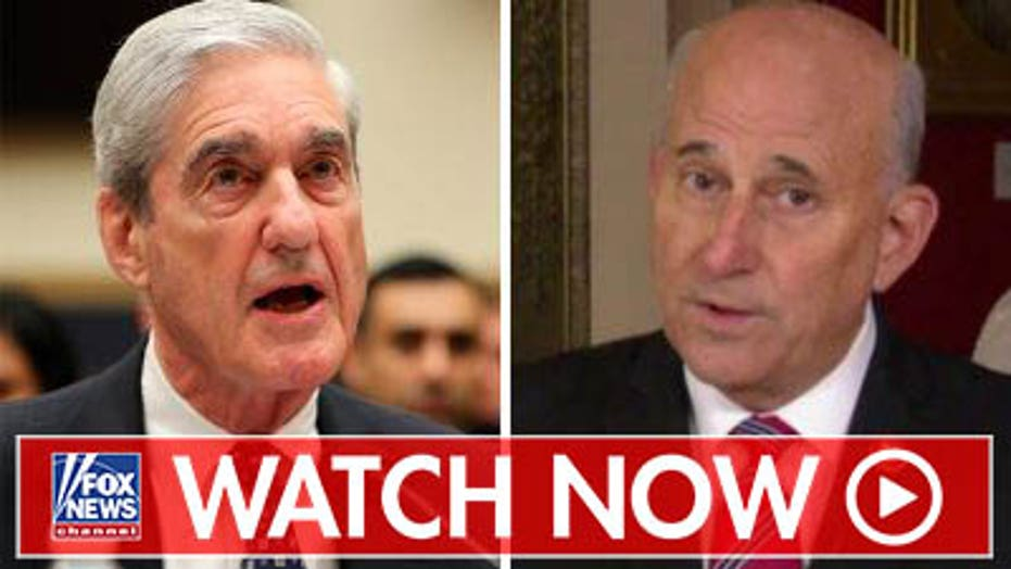Rep. Gohmert to Mueller: You perpetuated injustice