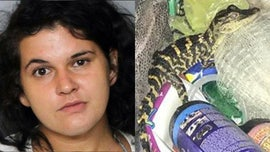 Florida woman sentenced after pulling alligator from her pants during traffic stop: officials