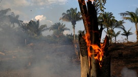 Brazilian environmental minister heckled over record Amazon fires: 'Stop Ecocide!'