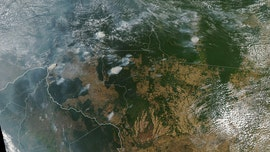 Amazon wildfires can be seen from space, NASA images show