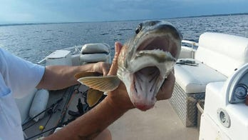 Fish with 'two mouths' shocks anglers: 'It's a catch of a lifetime'