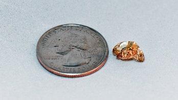 Texas woman finds 3.72-carat yellow diamond during visit to Arkansas park