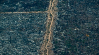 Amazon fires spur Brazil to ban most burning for 60 days