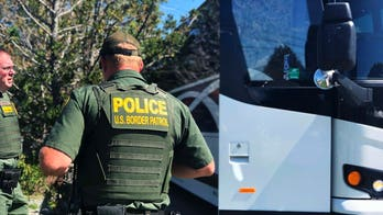Bus companies reject calls to ban immigration agents from boarding